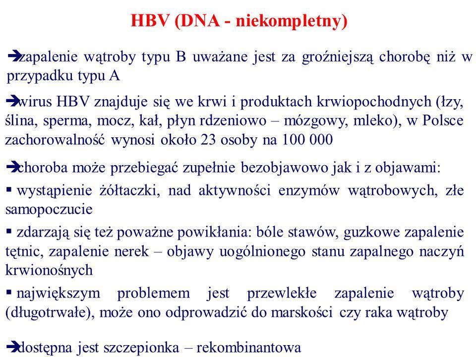 HBV (DNA - niekompletny)