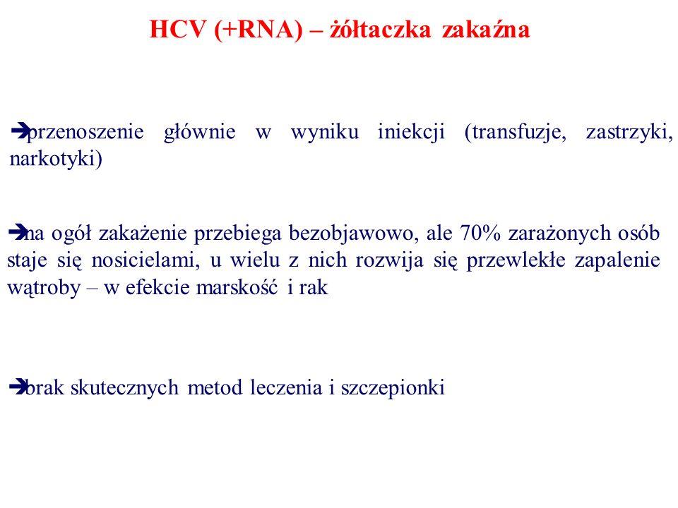 HCV (+RNA) – żółtaczka zakaźna