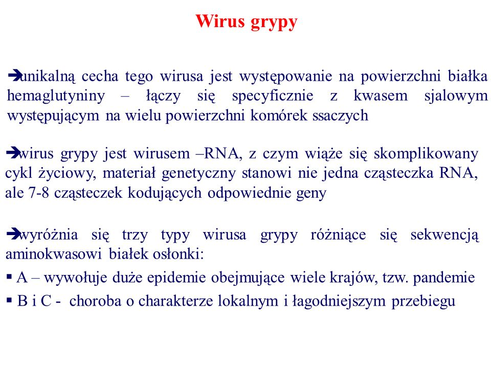 Wirus grypy