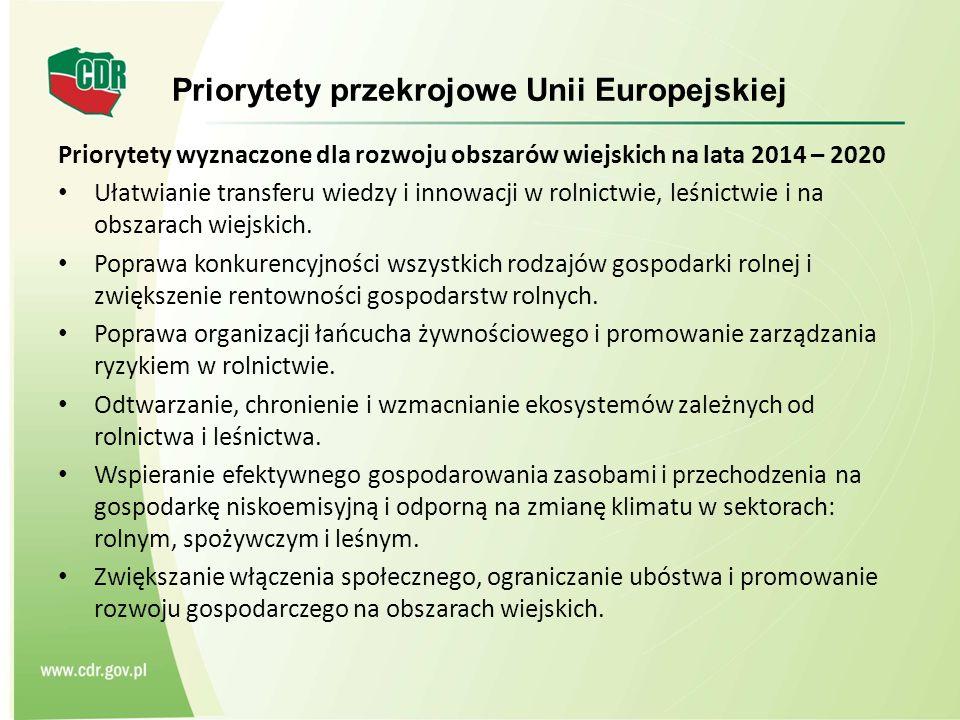 Priorytety przekrojowe Unii Europejskiej