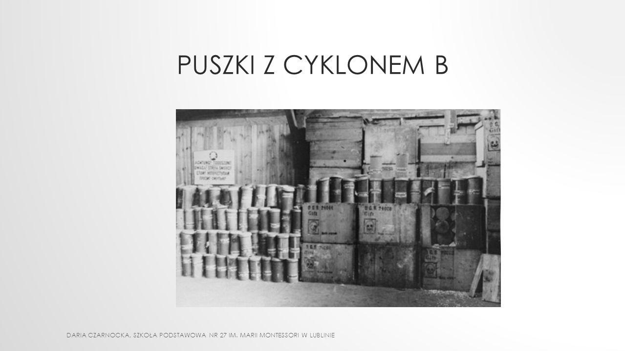 PUSZKI Z CYKLONEM B DARIA CZARNOCKA, Szkoła Podstawowa nr 27 im. Marii Montessori w Lublinie