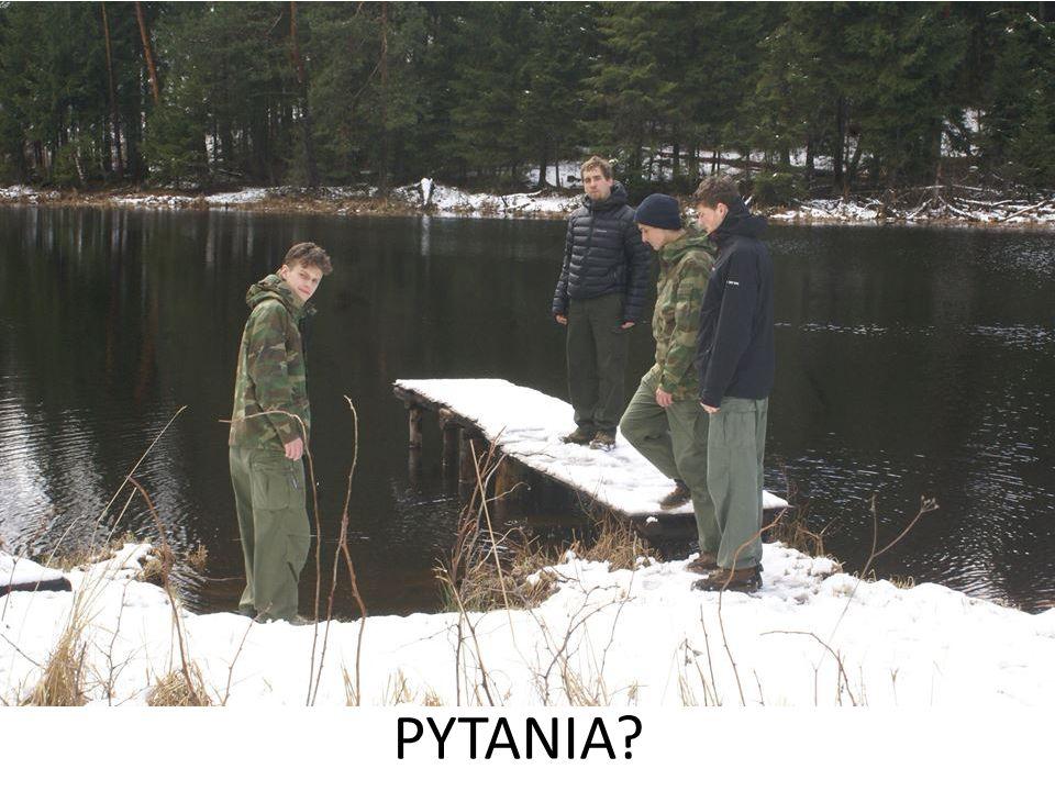 Pytania PYTANIA 21