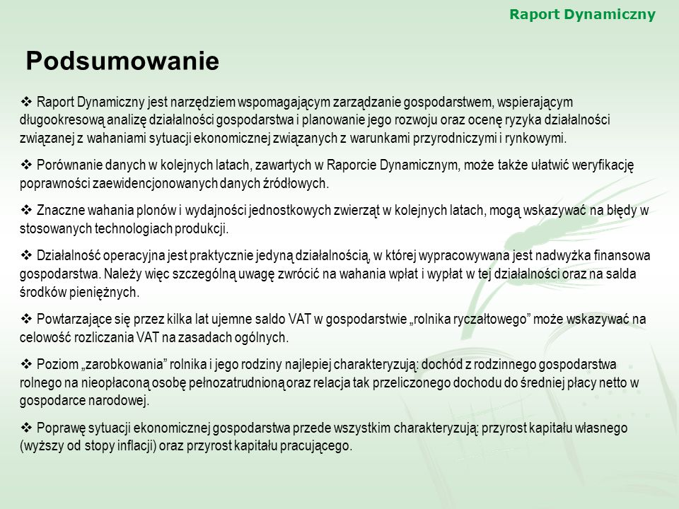 Raport Dynamiczny Podsumowanie.
