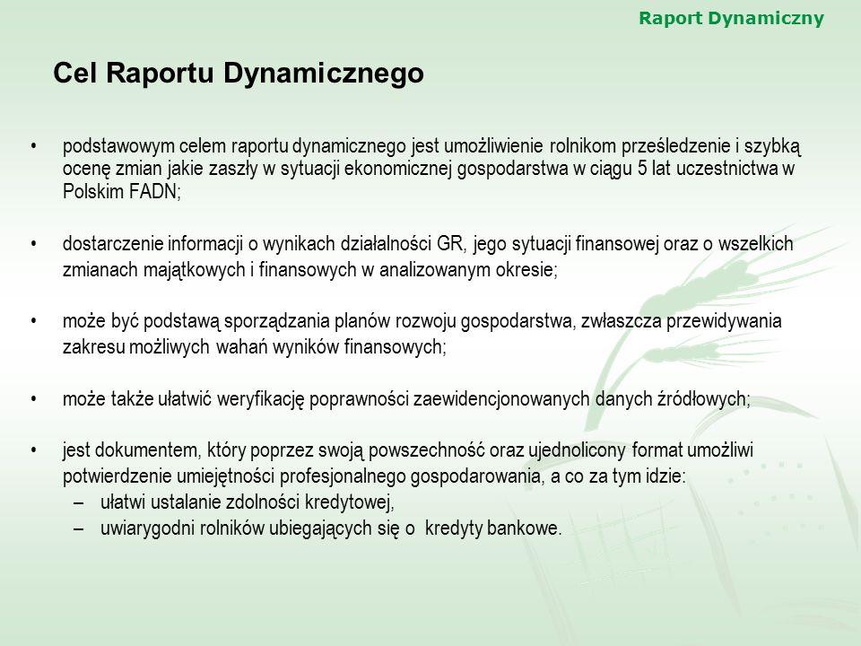 Cel Raportu Dynamicznego
