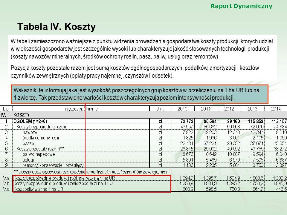 Raport Dynamiczny Tabela IV. Koszty.