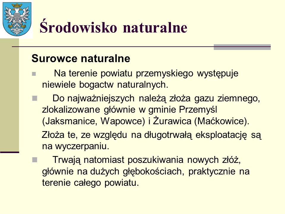 Środowisko naturalne Surowce naturalne