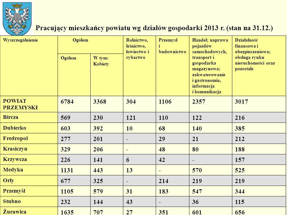 Pracujący mieszkańcy powiatu wg działów gospodarki 2013 r. (stan na 31