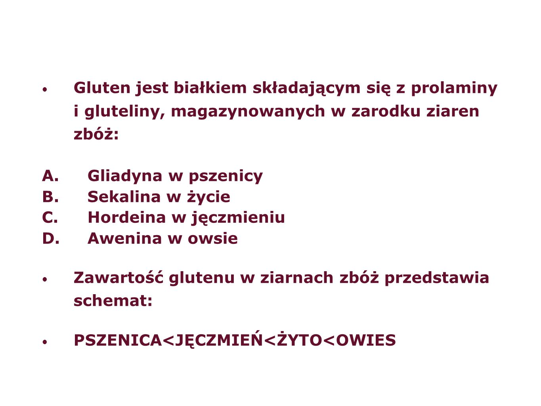 Gluten jest białkiem składającym się z prolaminy i gluteliny, magazynowanych w zarodku ziaren zbóż: