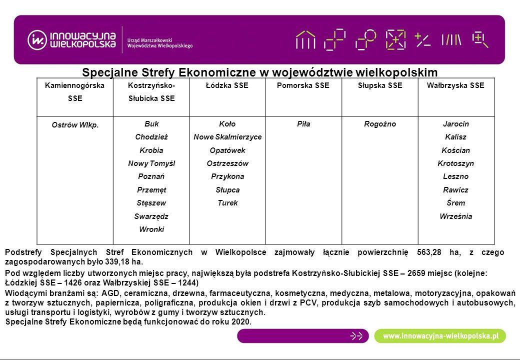 Specjalne Strefy Ekonomiczne w województwie wielkopolskim