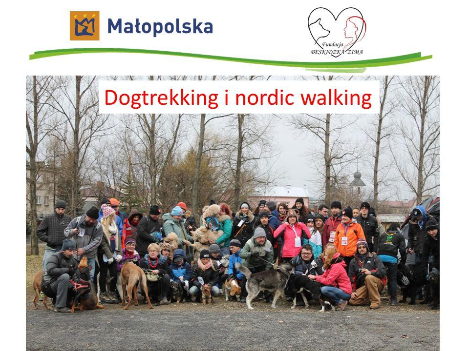 Dogtrekking i nordic walking