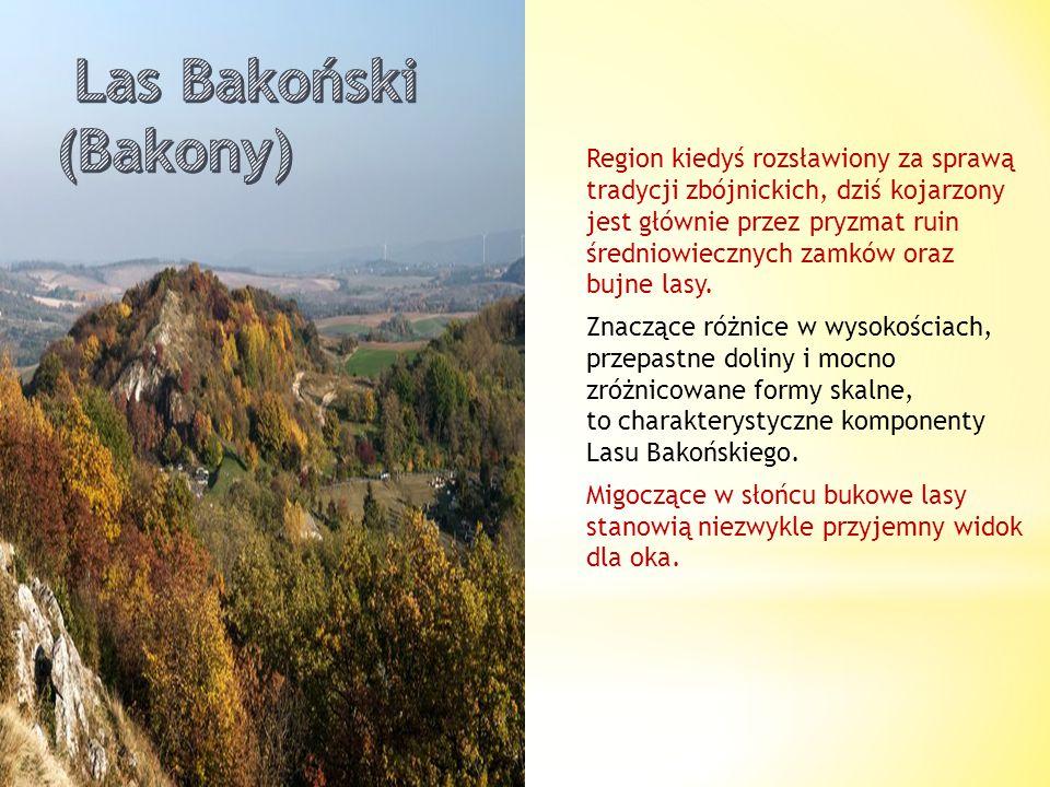 Las Bakoński (Bakony)