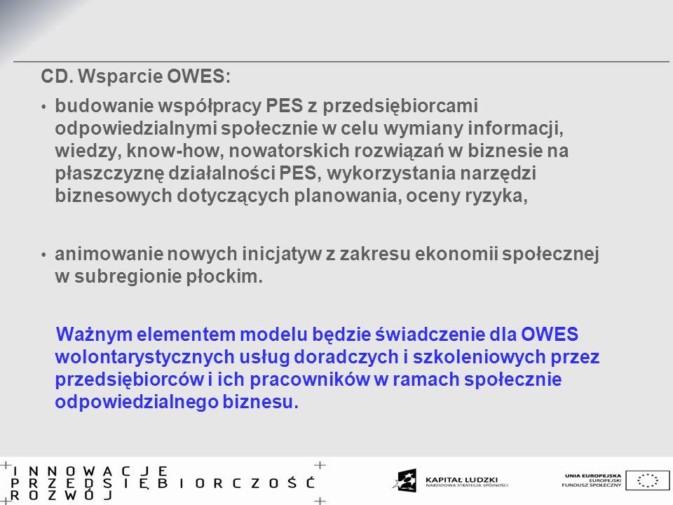 CD. Wsparcie OWES: