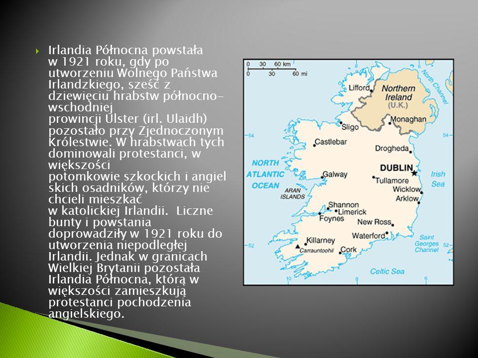 Irlandia Północna powstała w 1921 roku, gdy po utworzeniu Wolnego Państwa Irlandzkiego, sześć z dziewięciu hrabstw północno- wschodniej prowincji Ulster (irl. Ulaidh) pozostało przy Zjednoczonym Królestwie.