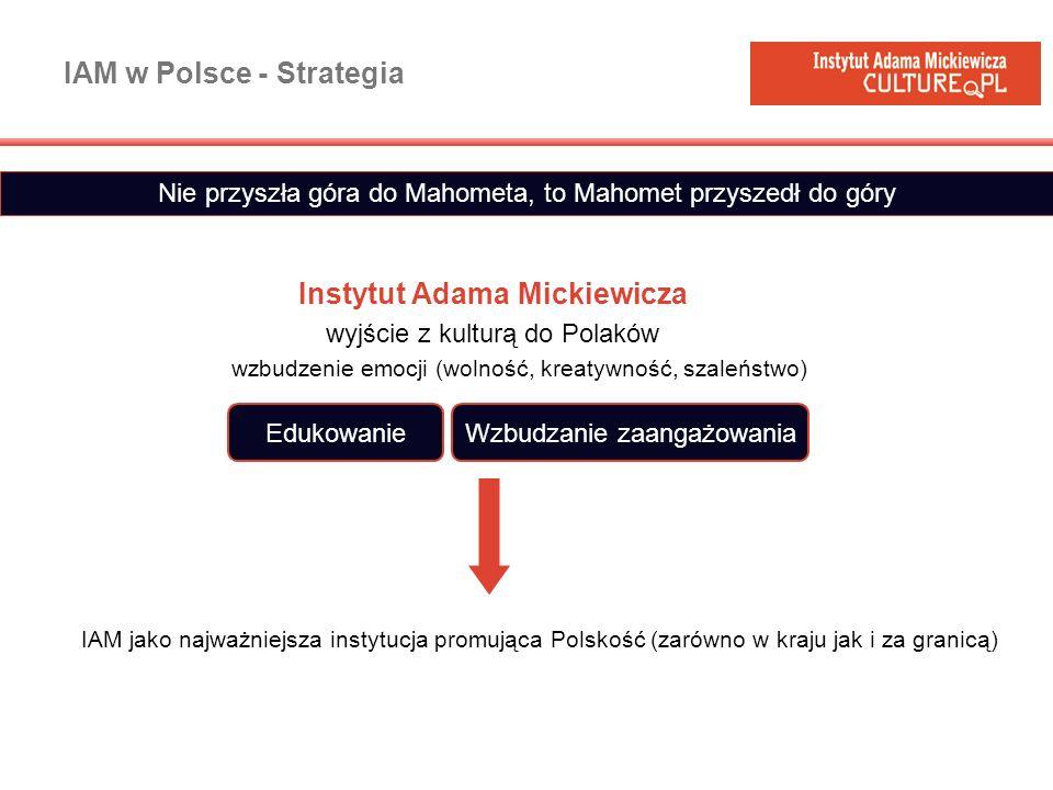 IAM w Polsce - Strategia