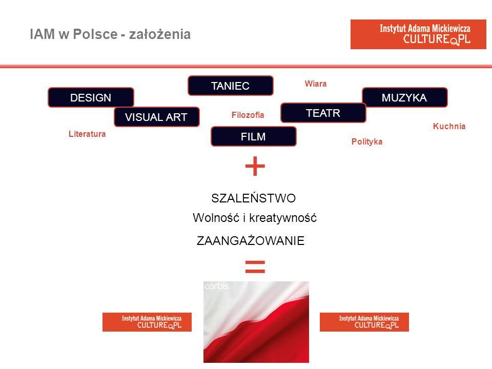 IAM w Polsce - założenia