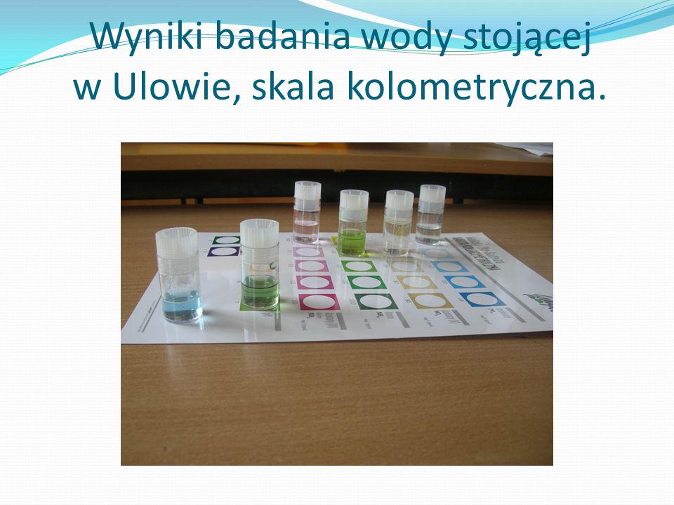 Wyniki badania wody stojącej w Ulowie, skala kolometryczna.