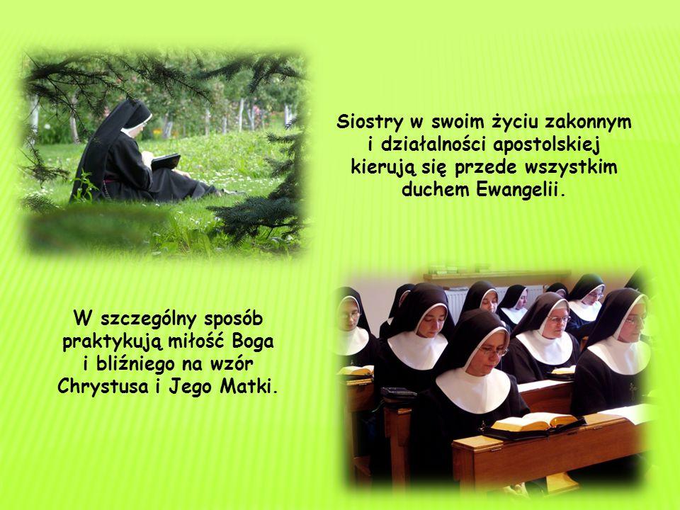 Siostry w swoim życiu zakonnym i działalności apostolskiej