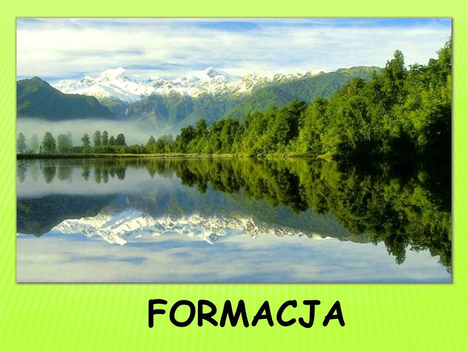 FORMACJA