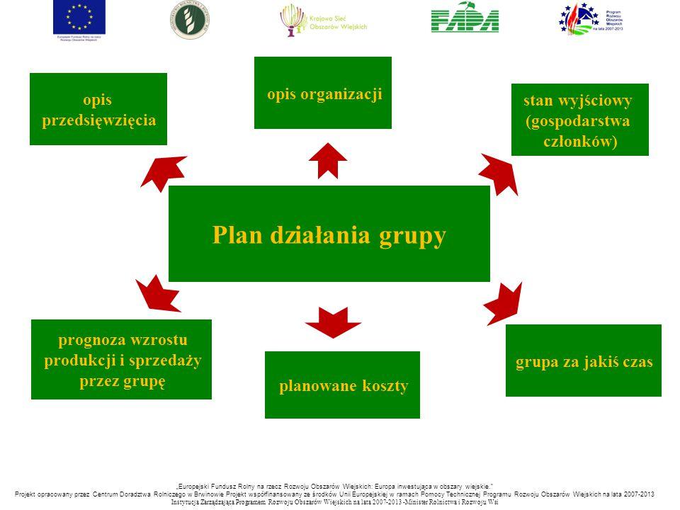 Plan działania grupy opis organizacji opis stan wyjściowy