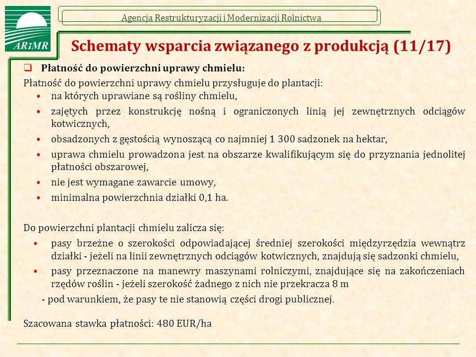 Schematy wsparcia związanego z produkcją (11/17)