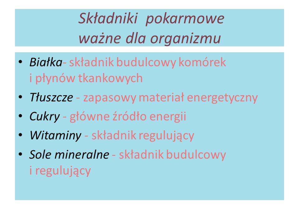 Składniki pokarmowe ważne dla organizmu