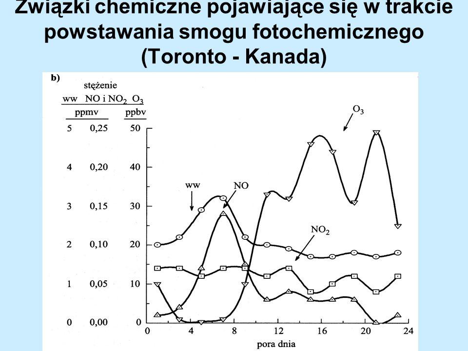 Związki chemiczne pojawiające się w trakcie powstawania smogu fotochemicznego (Toronto - Kanada)