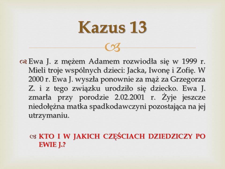 Kazus 13