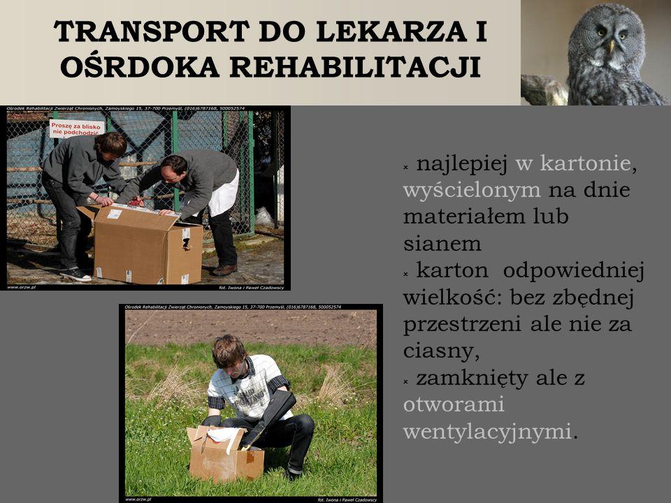 TRANSPORT DO LEKARZA I OŚRDOKA REHABILITACJI