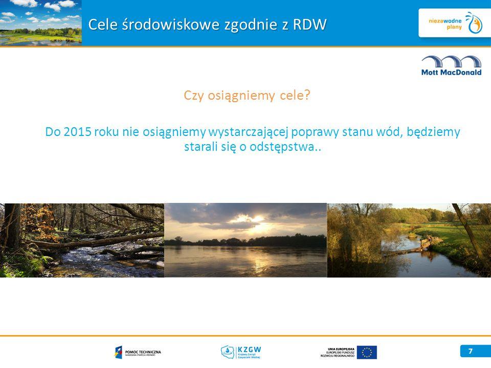 Cele środowiskowe zgodnie z RDW