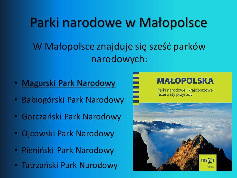 Parki narodowe w Małopolsce
