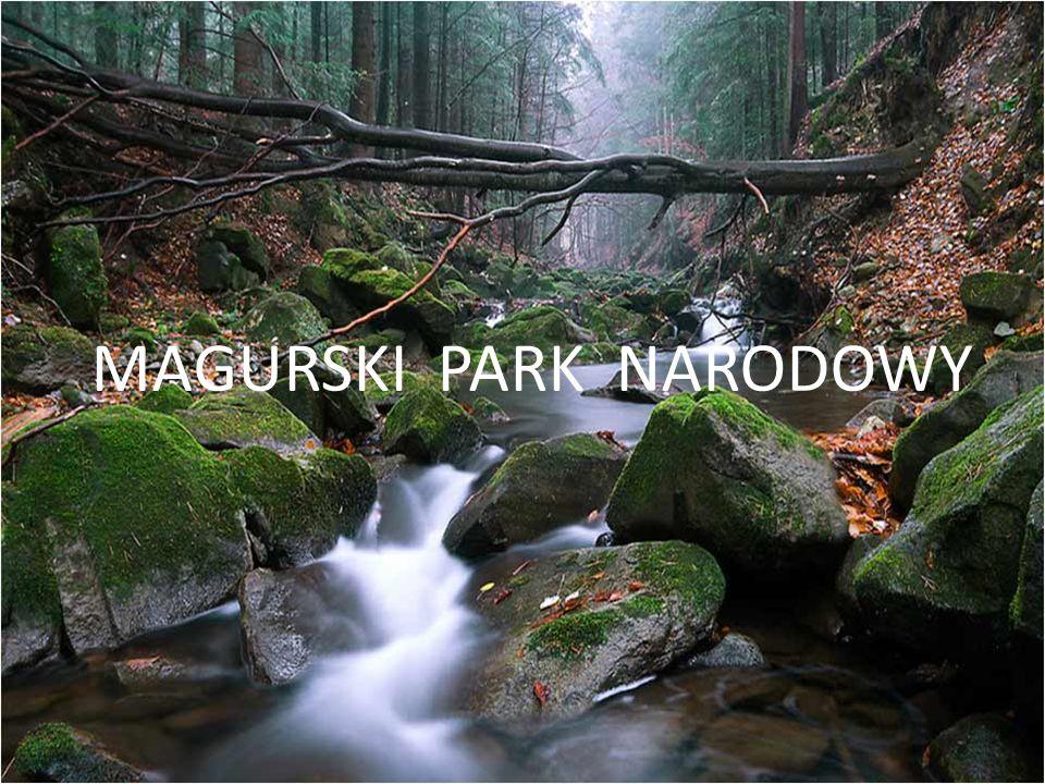 MAGURSKI PARK NARODOWY