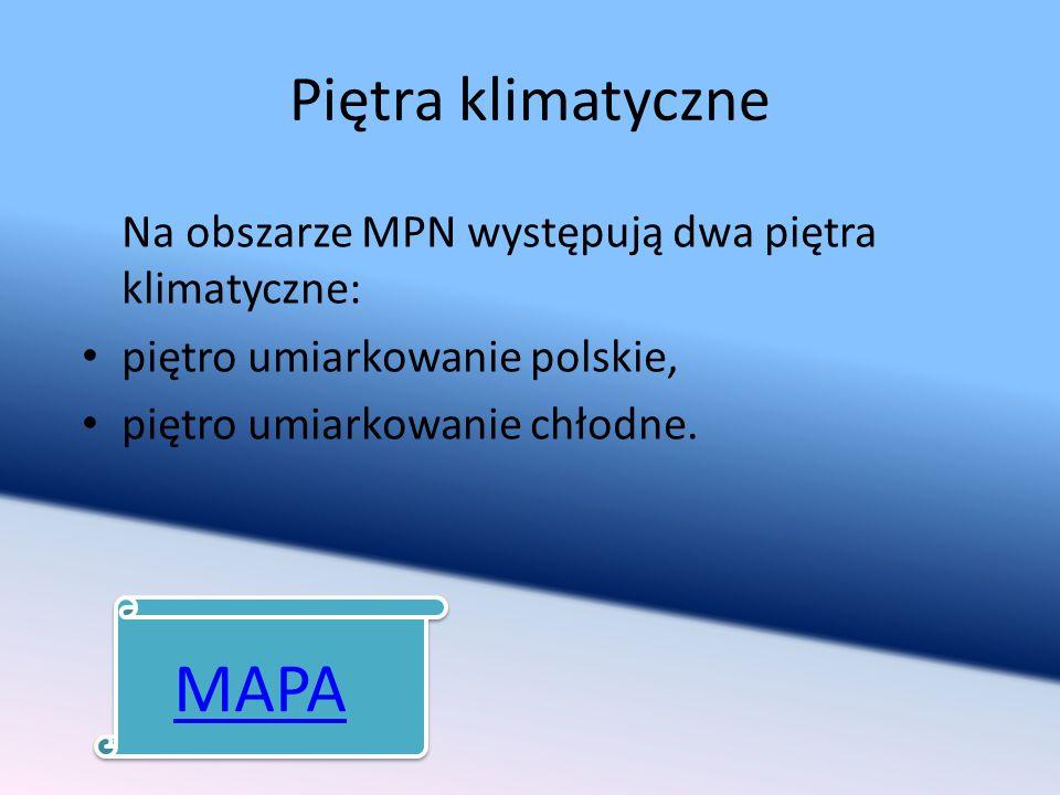 MAPA Piętra klimatyczne