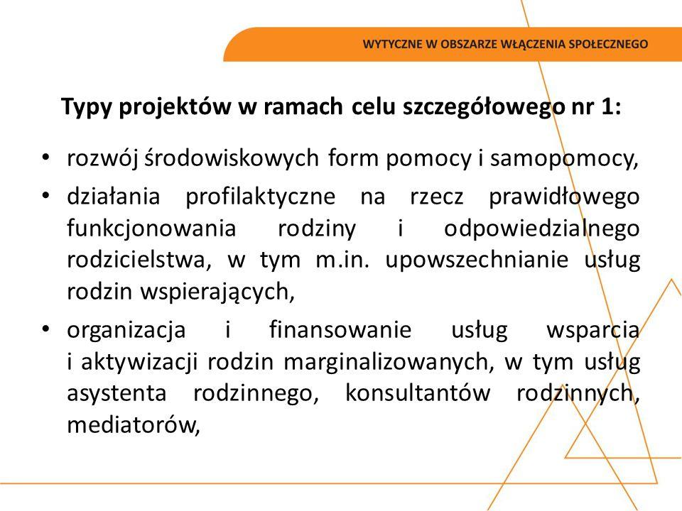 Typy projektów w ramach celu szczegółowego nr 1: