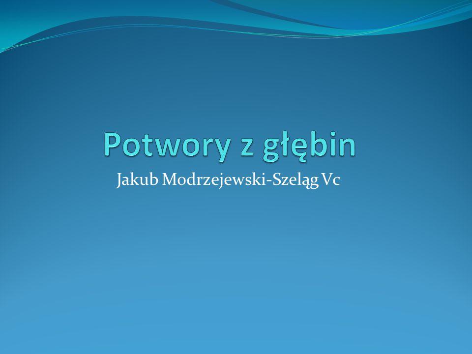 Jakub Modrzejewski-Szeląg Vc