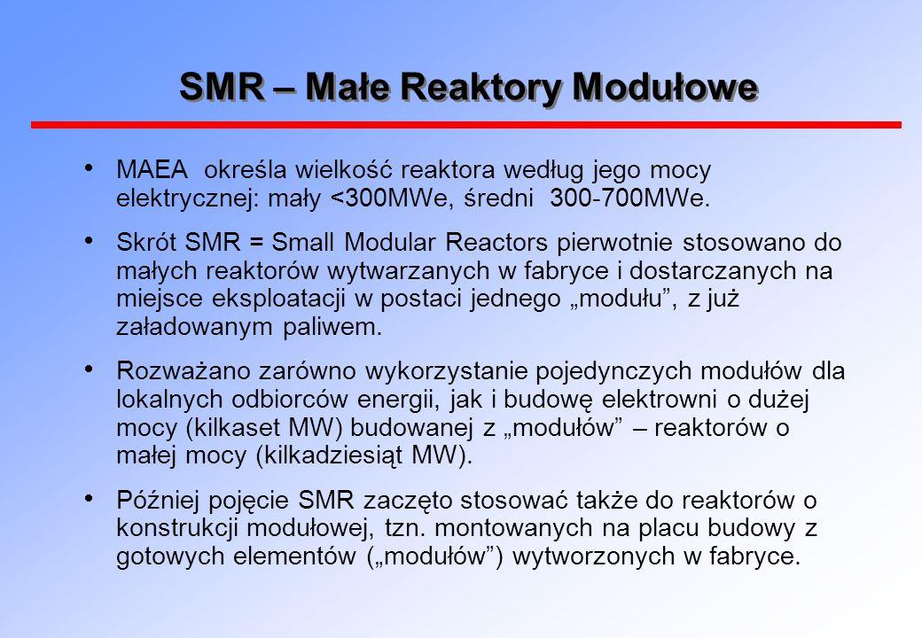 SMR – Małe Reaktory Modułowe