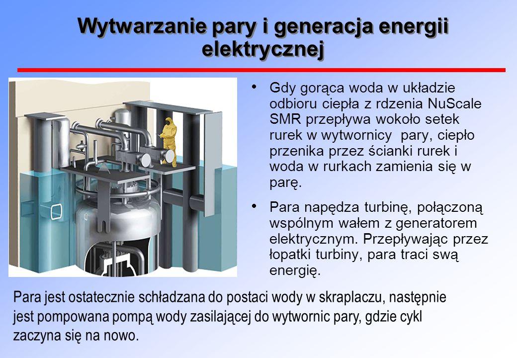 Wytwarzanie pary i generacja energii elektrycznej