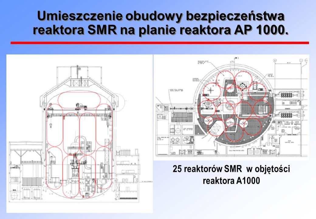25 reaktorów SMR w objętości reaktora A1000