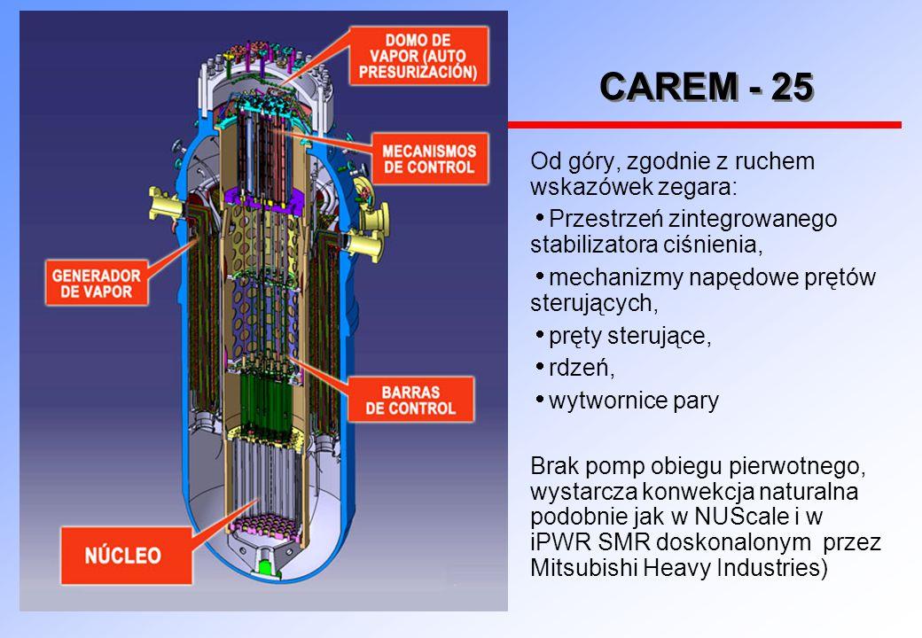 CAREM - 25 Od góry, zgodnie z ruchem wskazówek zegara: