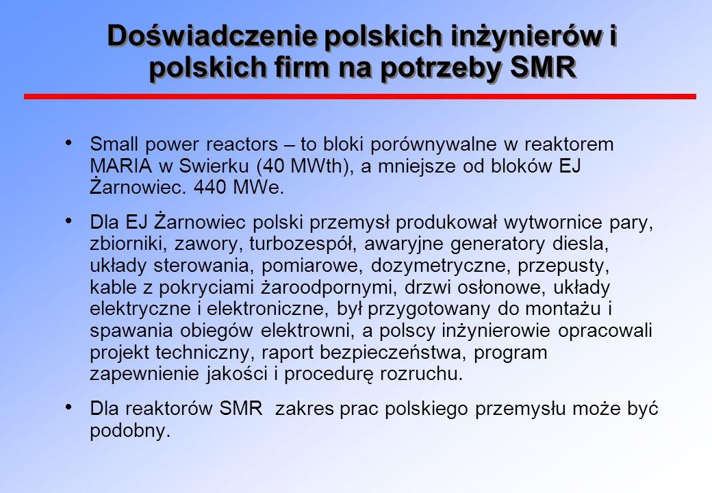 Doświadczenie polskich inżynierów i polskich firm na potrzeby SMR