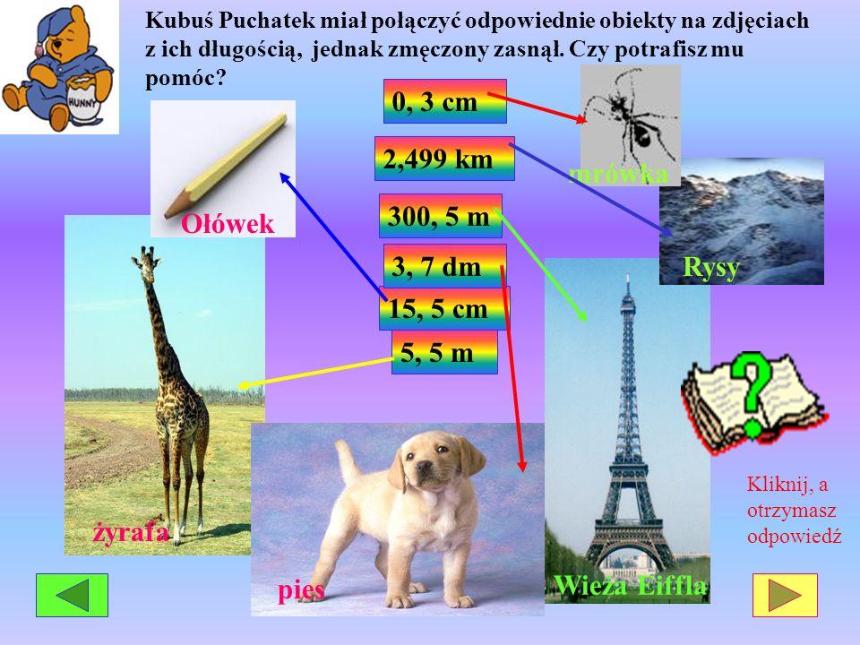 mrówka 0, 3 cm Ołówek 2,499 km Rysy 300, 5 m żyrafa 3, 7 dm