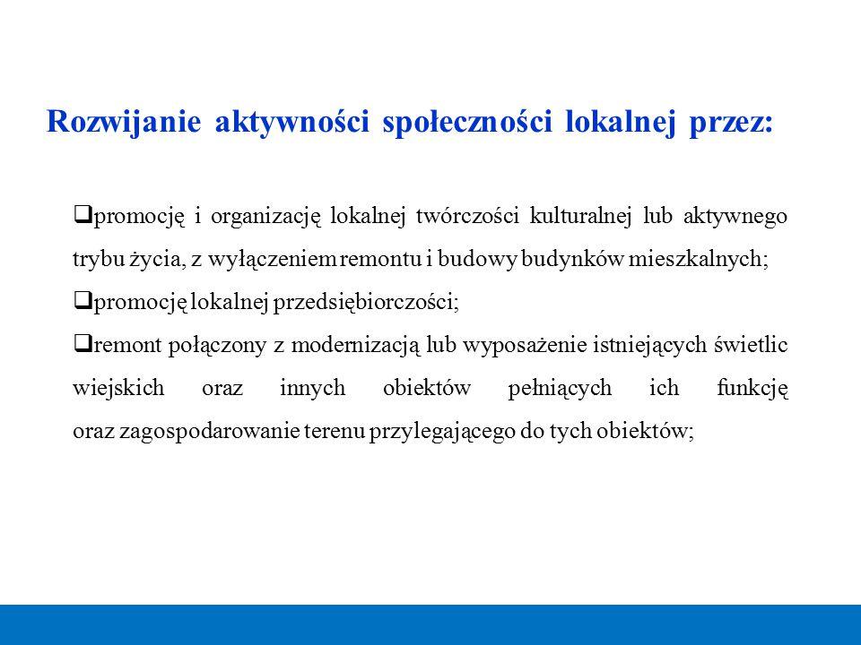Rozwijanie aktywności społeczności lokalnej przez: