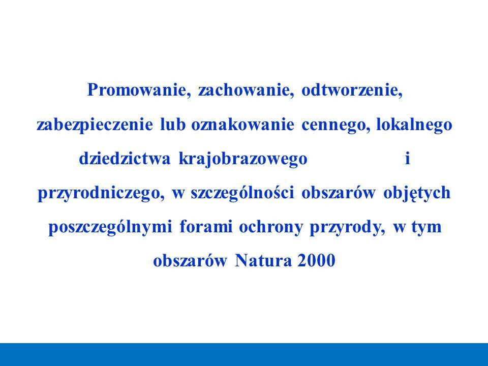 Promowanie, zachowanie, odtworzenie, zabezpieczenie lub oznakowanie cennego, lokalnego dziedzictwa krajobrazowego i przyrodniczego, w szczególności obszarów objętych poszczególnymi forami ochrony przyrody, w tym obszarów Natura 2000