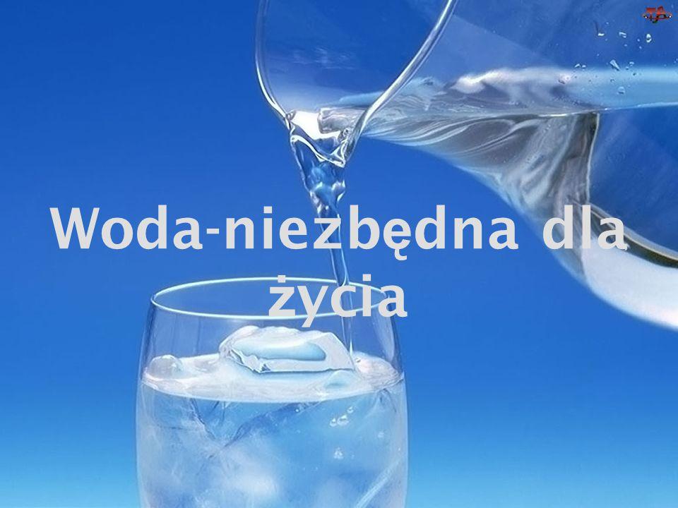 Woda-niezbędna dla życia