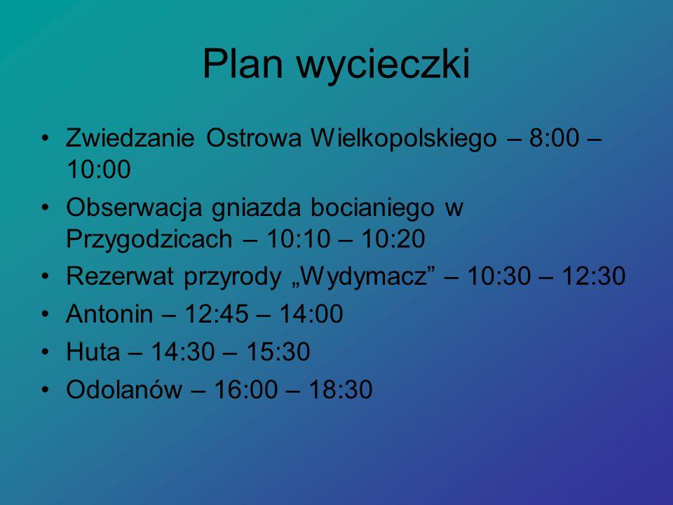 Plan wycieczki Zwiedzanie Ostrowa Wielkopolskiego – 8:00 – 10:00
