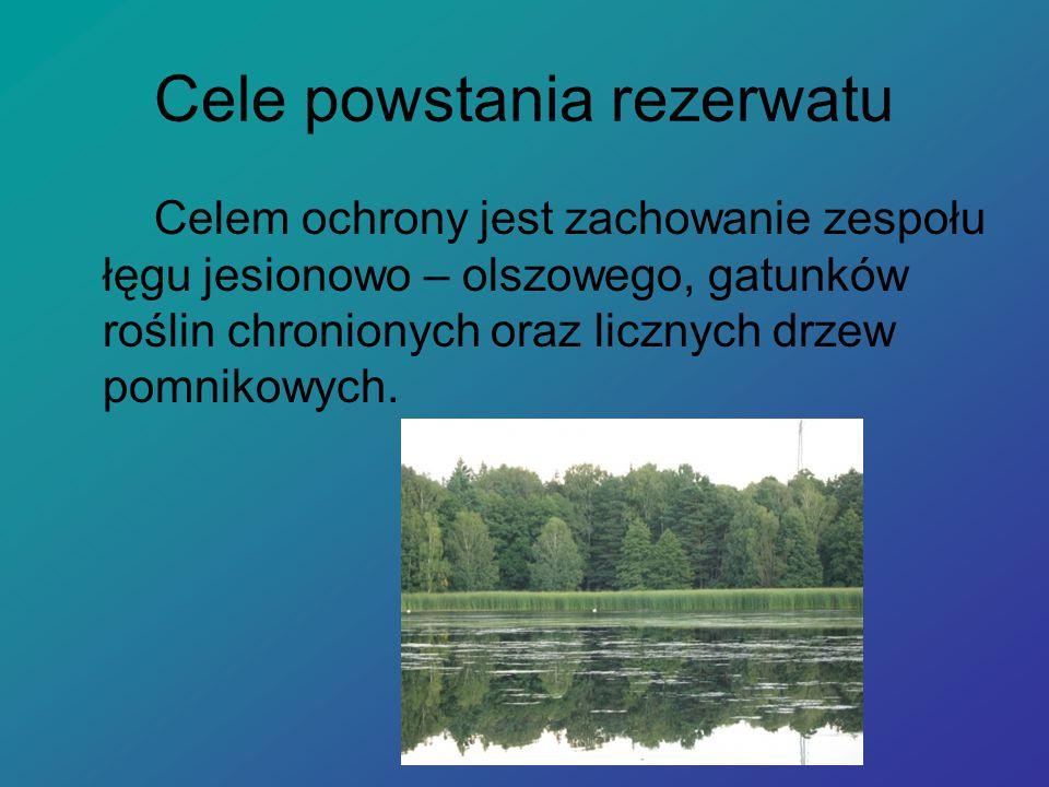Cele powstania rezerwatu