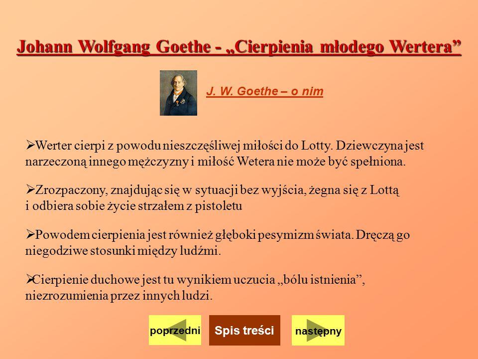 "Johann Wolfgang Goethe - ""Cierpienia młodego Wertera"