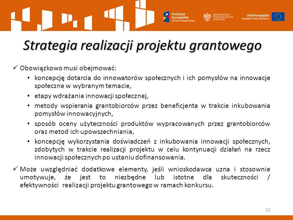 Strategia realizacji projektu grantowego