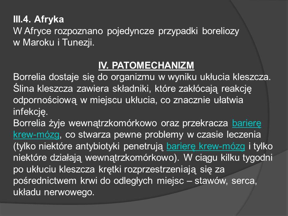 III.4. Afryka W Afryce rozpoznano pojedyncze przypadki boreliozy w Maroku i Tunezji. IV. PATOMECHANIZM.