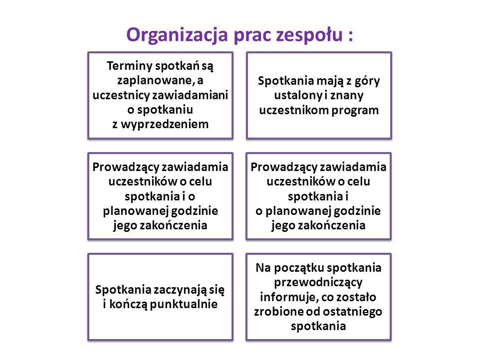 Organizacja prac zespołu :
