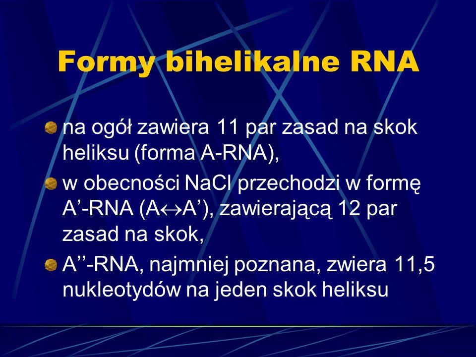 Formy bihelikalne RNAna ogół zawiera 11 par zasad na skok heliksu (forma A-RNA),